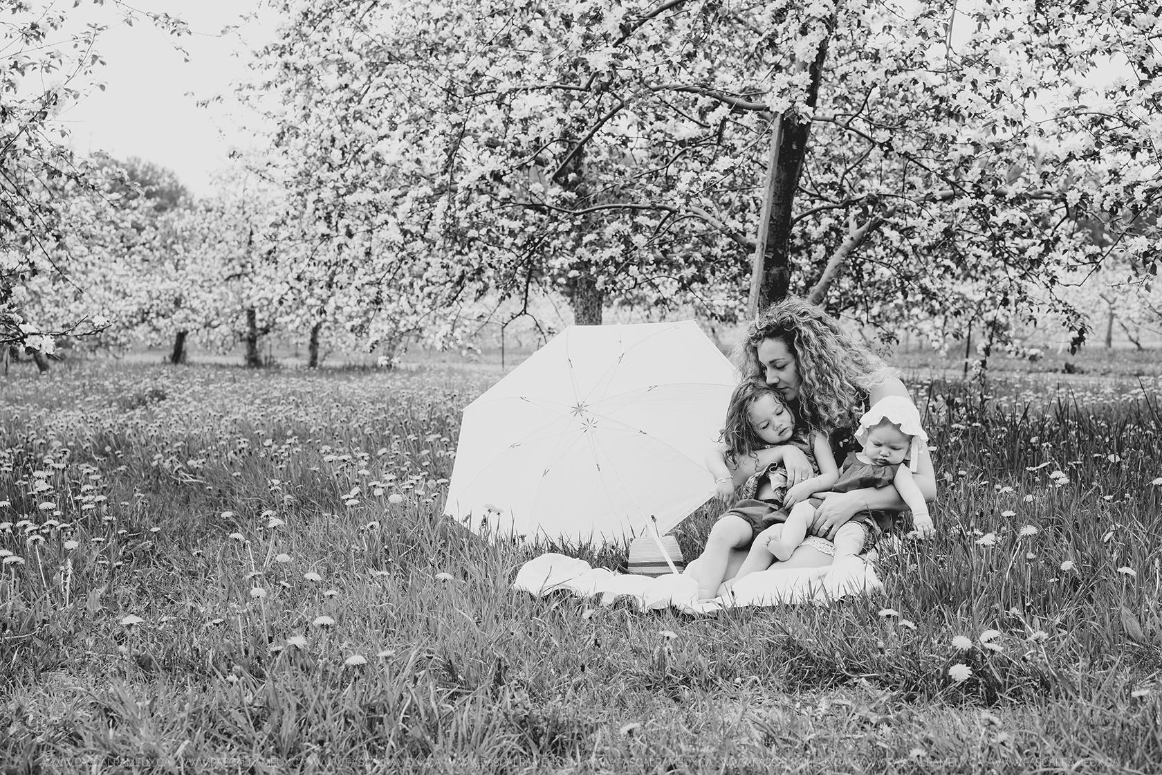 Photographe Famille Granby