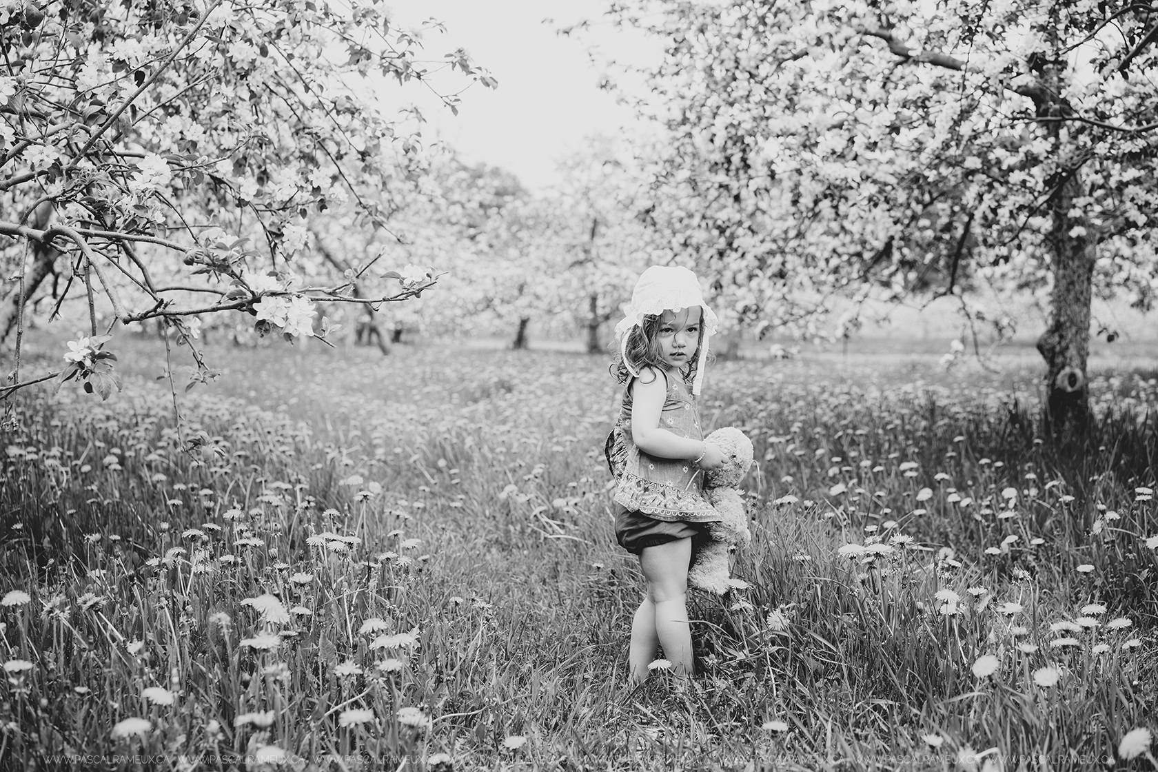 Photographe Sherbrooke